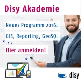 www.disy.net/akademie